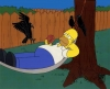 Homerhammockcrows