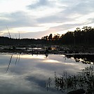 Pine Barrens by Deadphans in Group Campouts