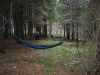 Dd 2010 Travel Hammock