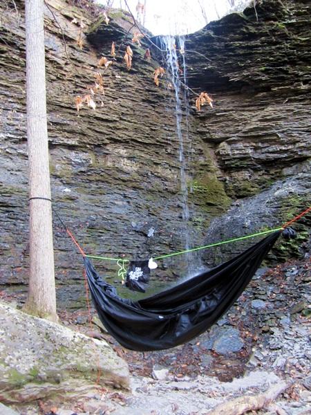 Wild Hangs