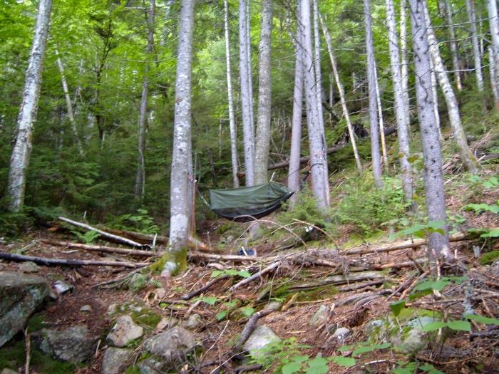 Nancy Brook Trail