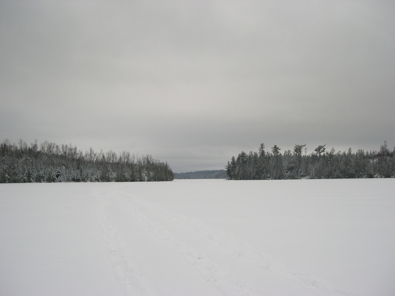 Looking West To Moose Lake