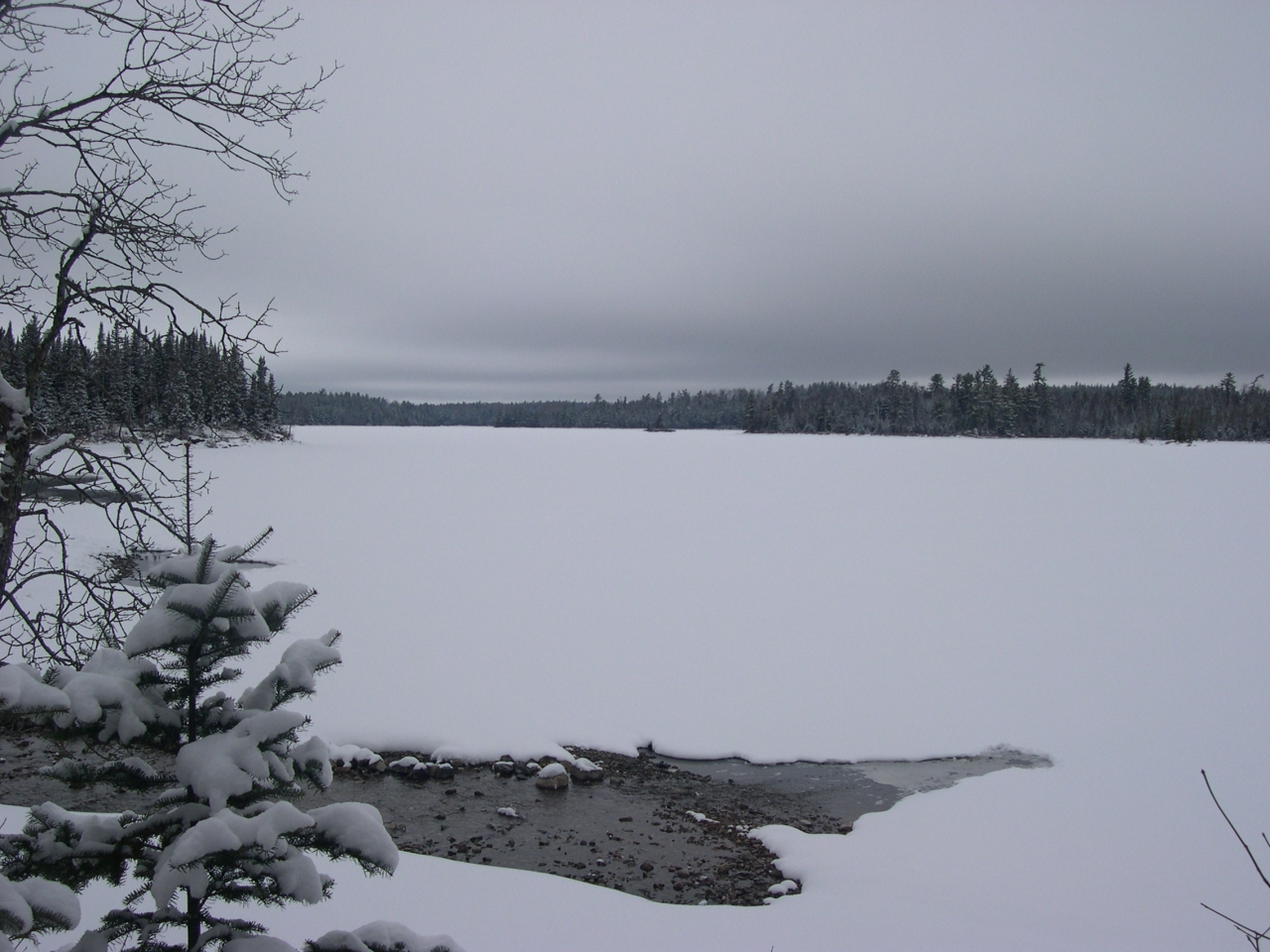 North From Basswood Lake