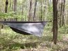 Hh Day by dpage in Hammocks