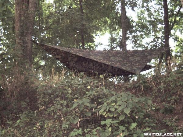 stealth hammocking
