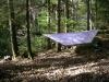 Cuben tarp in use by hangnout in Tarps