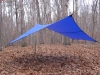 XL Hex Cat Tarp