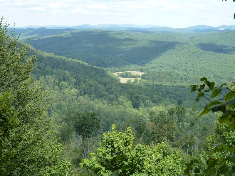 Allegheny Trail Near Gaudineer Knob