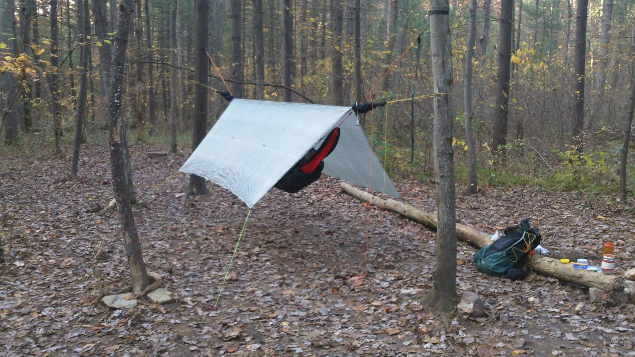 Tagg Run Shelter On The At