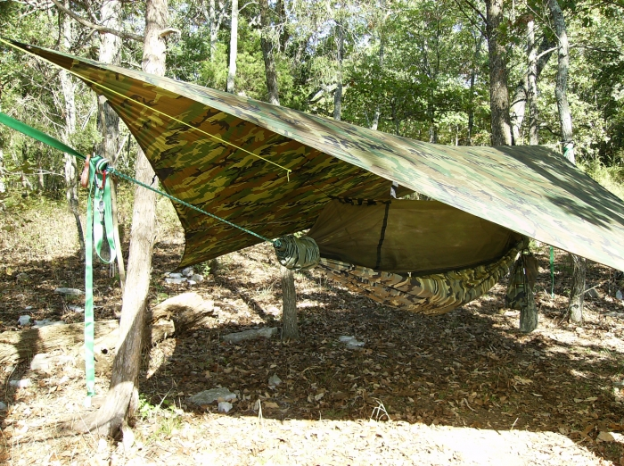 hammock hanging on ponderosa island