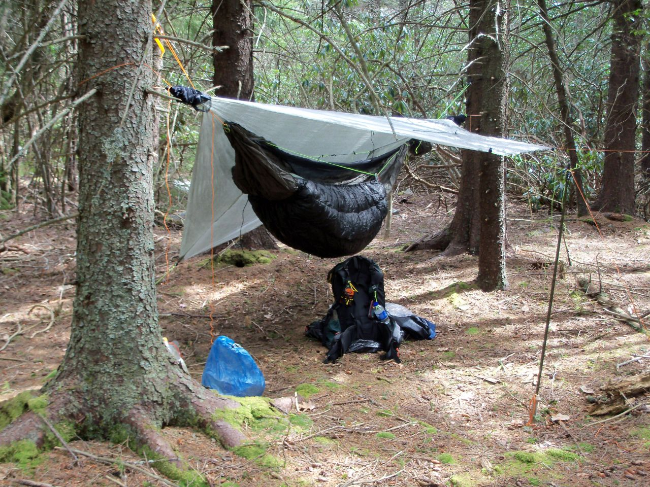 Hammock Hang Site Along Canyon Rim Trail
