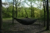 Profile by Hearn in Hammocks