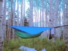 COLORADO by ringtail-THFKAfood in Hammock Landscapes