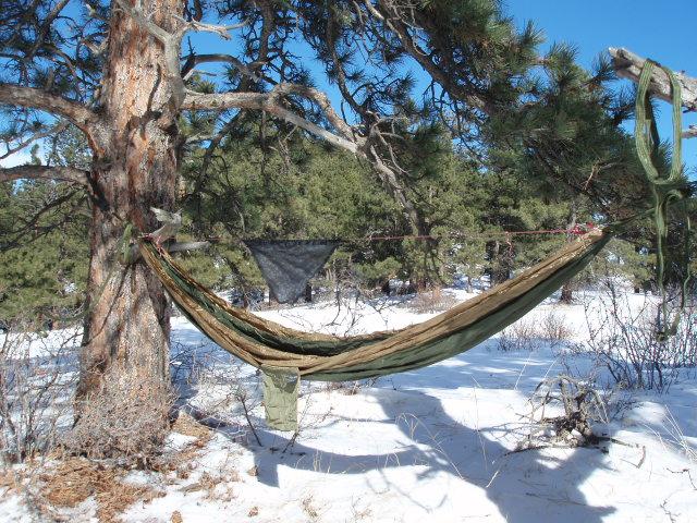 Fusion hammock