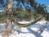 Fusion hammock by ringtail-THFKAfood in Hammocks