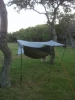My 1st Hammock Rig by BOWDOCC in Hammocks