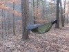 Turkey Day At Albert Pike by Big D in Hammocks