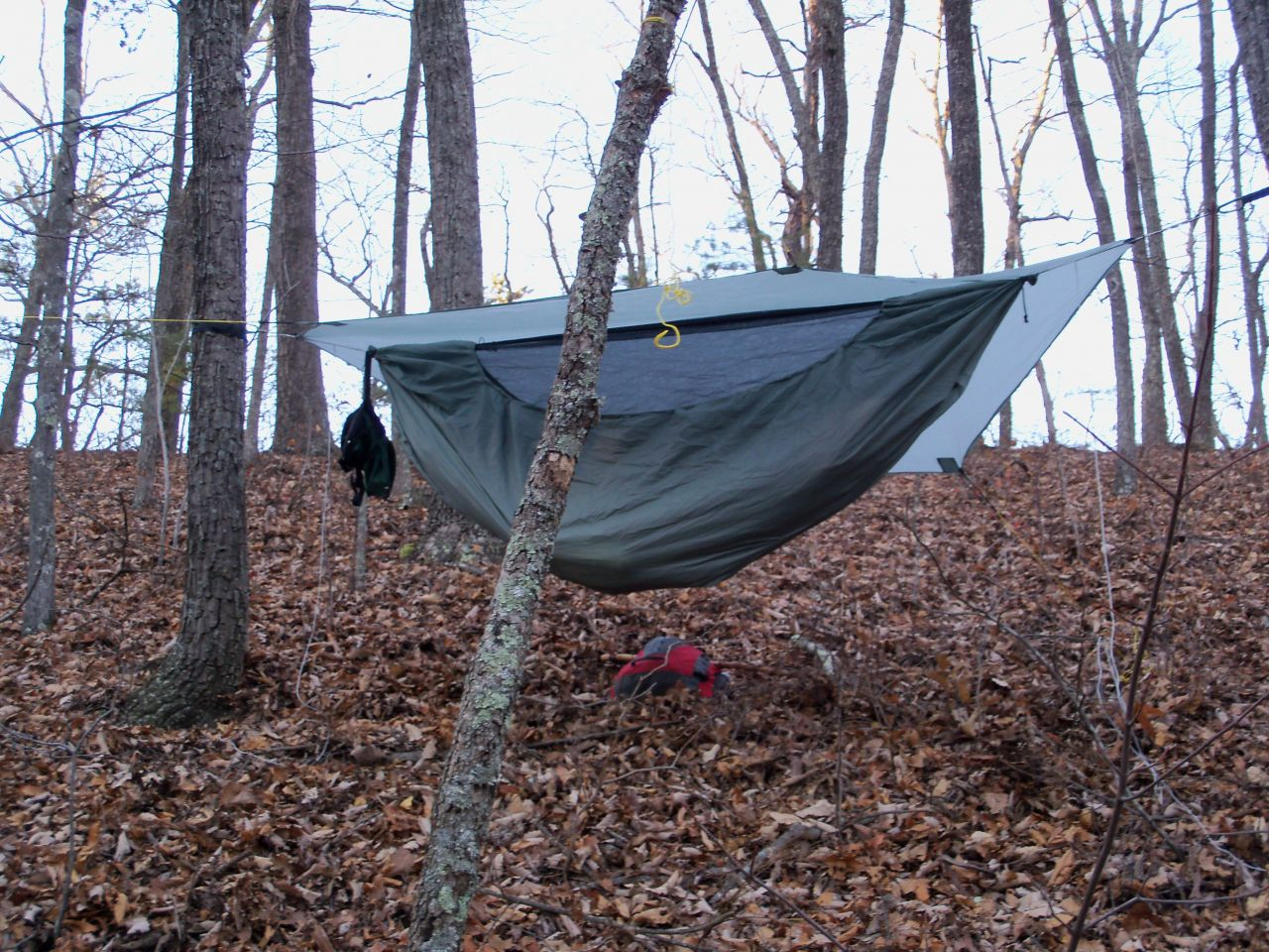 Thanksgiving Hang In Va
