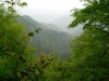 Mt Leconte & Green Briar 06 2011 Pt.1