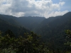 Mt Leconte & Green Briar 06 2011 Pt.2