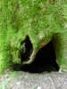 Mt Leconte & Green Briar 06 2011 Pt.2