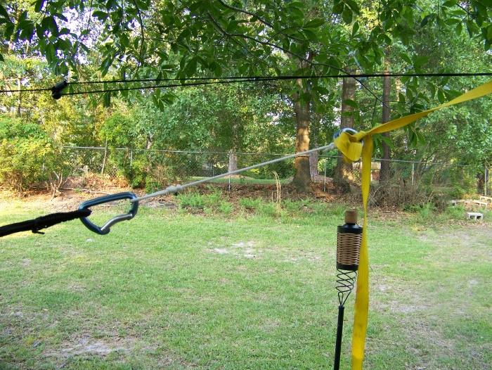 Hammock Set-up In Backyard