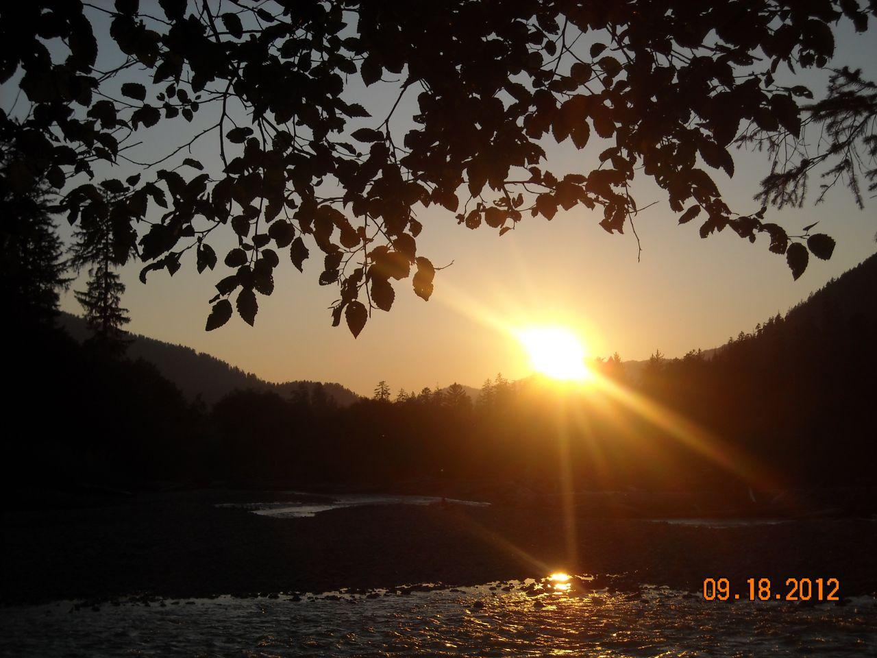 Hoh River Onp 2012