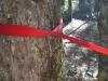 Strap/ring Suspension by swampfox in Hammocks