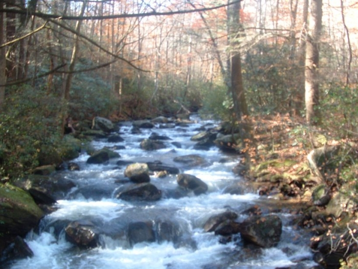 Middle Saluda River