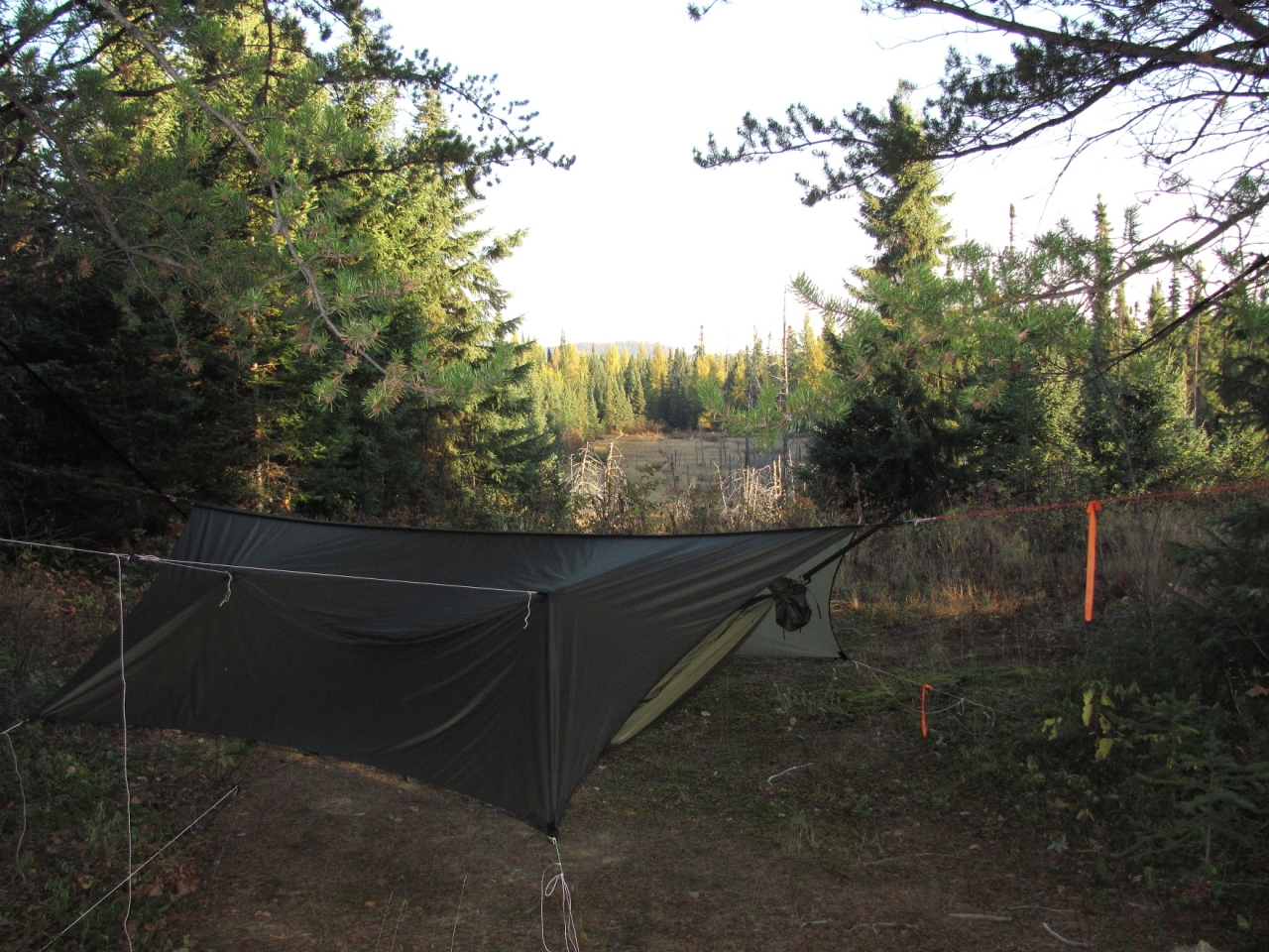 Moose Hunting 2011