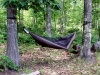 Bayview Hammock Test Center