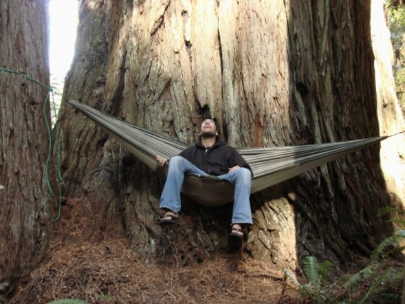 Trek Light Hammocks in the Redwoods
