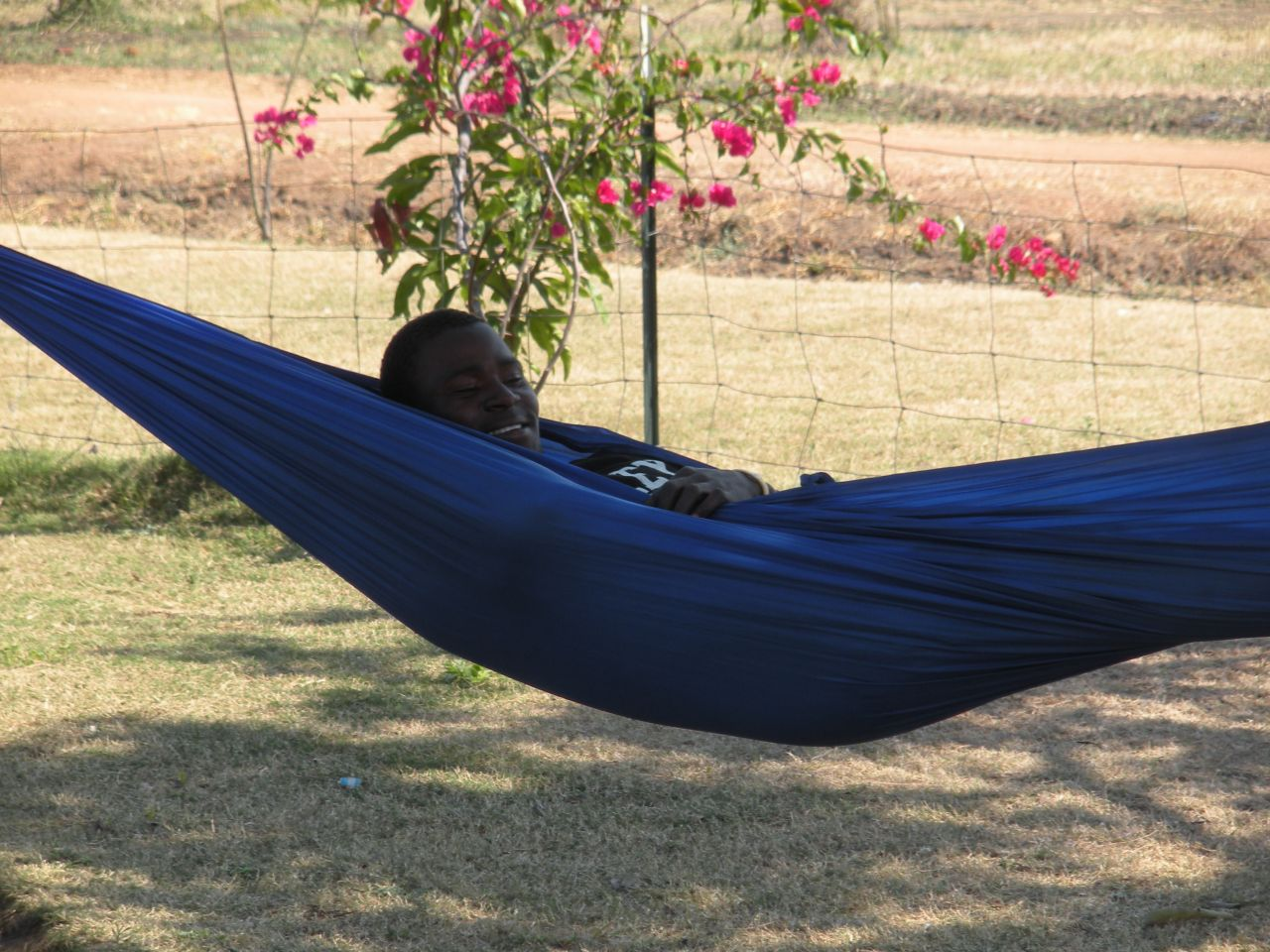 The Africans Like My Hammock.