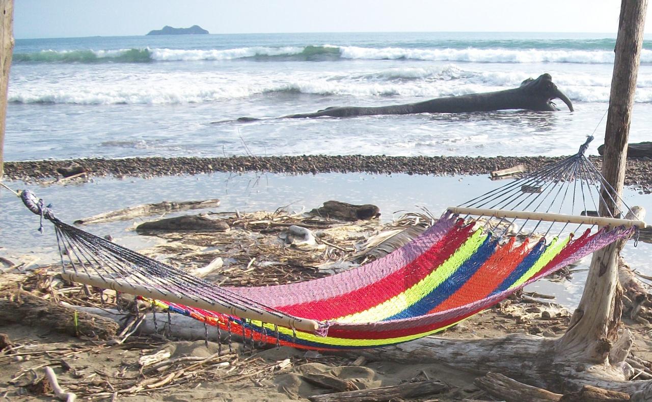 Uvita De Osa Costa Rica