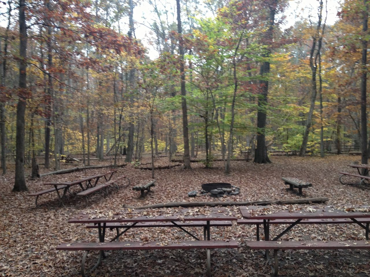 Dining Area And Fire Pit At Group Site B