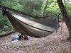 Eldorado's Warbonnet Blackbird by Eldorado in Hammocks