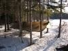 Daicey Pond - Baxter State Park, Maine