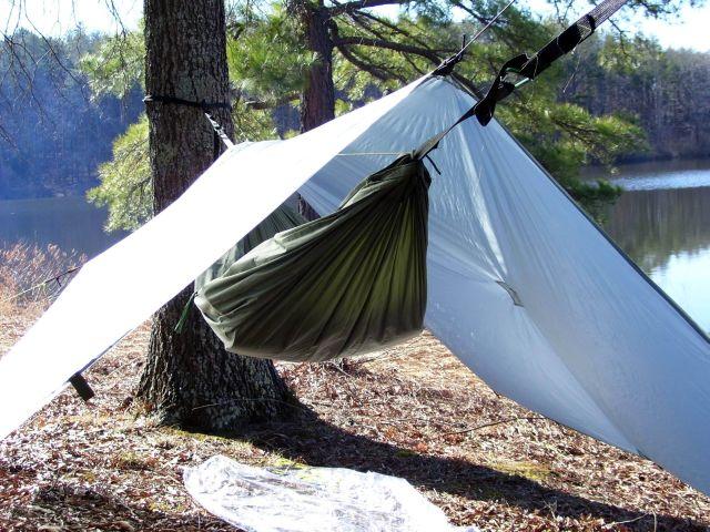Chazmo's hammock