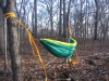 First Hang by Ballantine in Hammock Landscapes