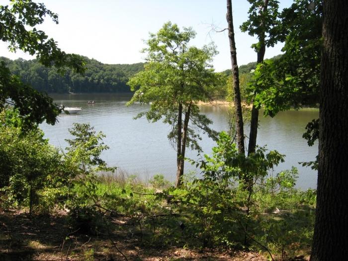 Pate Hollow At Lake Monroe, In