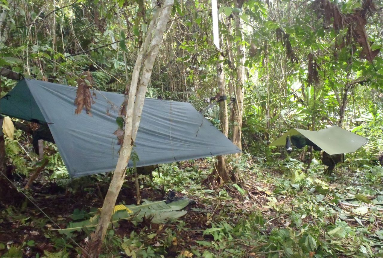 Borneo Trek 2012