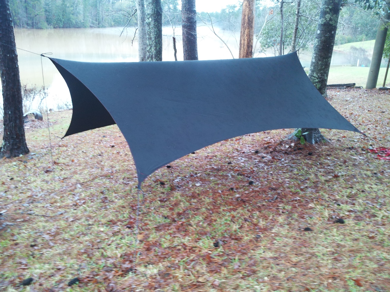 Proficio's 10 x 12 Black Widow Cat Tarp