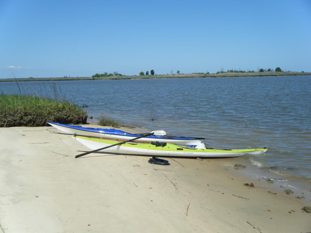 Francis Marion Nf-santee Coastal Reserve