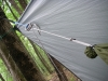 Hammock Line Suspension/rings/line