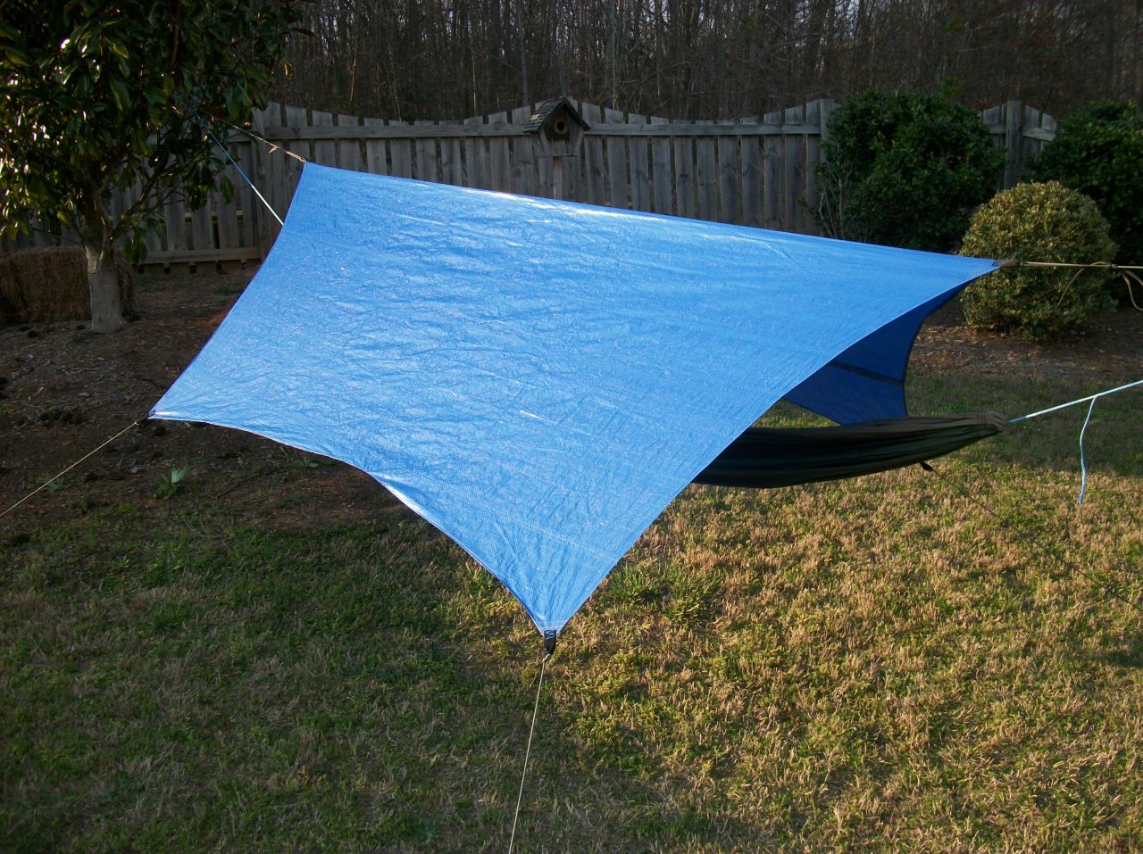 Bluecat Tarp (diy Cat Cut)