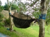 Woodland Edge Trial's by canalvoyageur in Hammocks