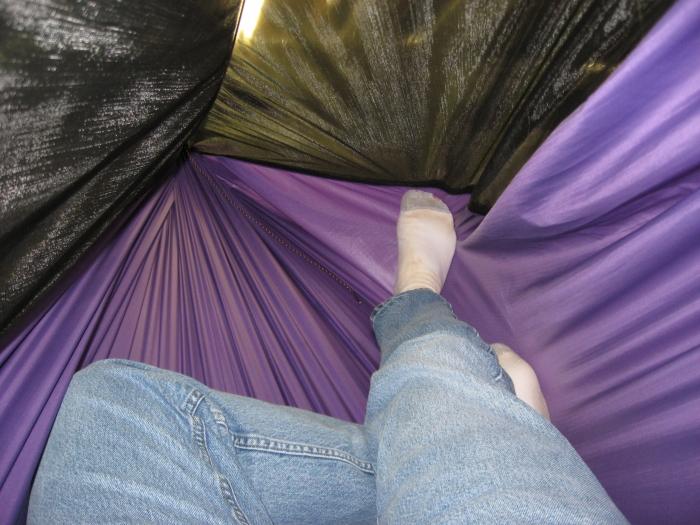 DD1's Purple birthday hammock