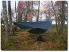 Plain DD Hammock, Underquilt And Tarp by Mr Adoby in Hammock Landscapes