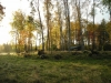 Autumn In Sm�land by Mr Adoby in Hammock Landscapes