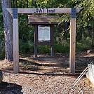 LOViT Trail by Snaggleroot in Hammock Landscapes